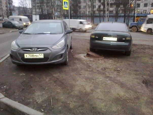 «Красивый Петербург» собирает адреса газонов, уничтоженных стихийной парковкой : Фото