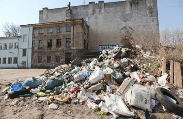 Экологи жалуются на несанкционированную свалку в Красносельском районе