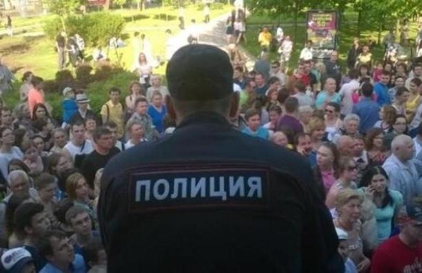 В Петербурге с боем раздали саженцы сибирских кедров