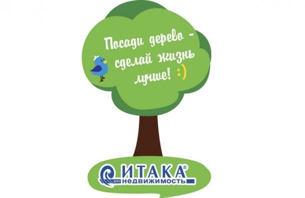 Посади дерево – сделай жизнь лучше!