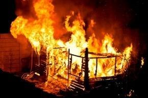 В Авиагородке мужчину и женщину убили и сожгли
