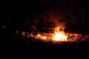 Жительница Ленобласти сожгла «Жигули» со спящим мужчиной внутри