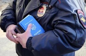 Госдума поддержала уголовную ответственность за сокрытие второго гражданства