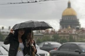 Ураганный ветер оставил без света 55 населенных пунктов в Ленобласти