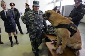 ТЦ «Мега» в Химках эвакуируют из-за подозрительного предмета