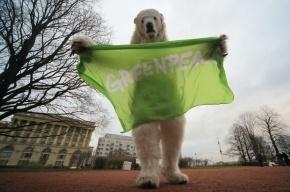 Активисты «Гринпис» задержаны в Нидерландах за акцию против танкера «Газпрома»