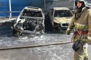 В Петербурге в сгоревшей иномарке нашли тело мужчины