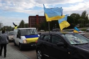 Полтора миллиона жителей Донбасса проголосовали за единство с Украиной