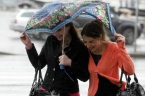 В День победы в Петербурге ожидаются ливни и грозы