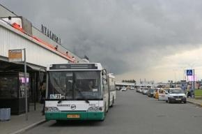 «Пассажиравтотранс» открывает с 1 июня новый маршрут до «Пулково»