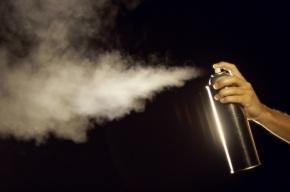 В Петербурге школьница умерла, вдохнув газ из баллончика