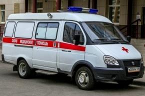 СК ищет свидетелей жестокого избиения в Колпино, в результате которого скончался мужчина