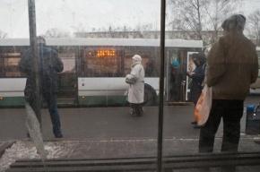 В Петербурге автомобиль протаранил автобусную остановку