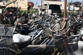 На всех вокзалах Петербурга появились велопарковки