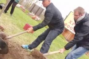 В Петербурге состоялась акция «Посади дерево Победы»