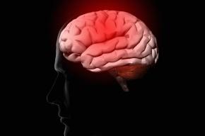 Ученые объяснили, почему стираются детские воспоминания