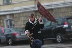 В Петербурге 14 мая ожидается штормовой ветер