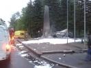 Фоторепортаж: «В Пушкине иномарка врезалась в мемориальный комплекс «Непокоренные»»