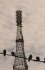 Шуховская башня: Фоторепортаж