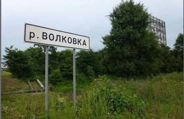 Активисты провели экологический рейд по Волковке