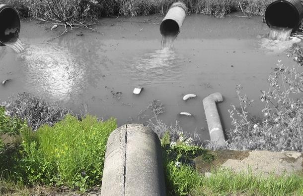 Река Волковка превратилась в коллектор