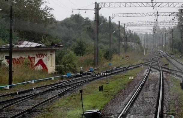 В Донецкой области подорвали российский грузовой состав