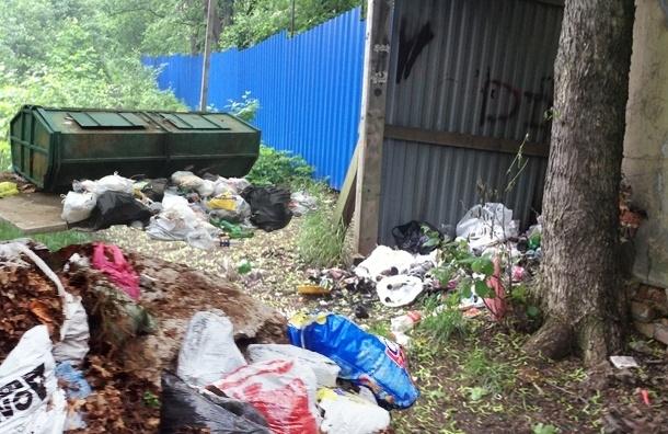 Чиновники не заметили мусорных куч в Озерках