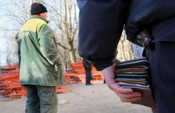 Граждане СНГ будут въезжать в РФ по загранпаспортам с 1 января 2015