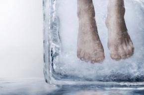 Ученый из Германии оплатит собственную «заморозку» на 150 лет