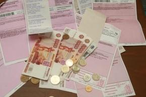 В Петербурге с 1 июля приостановлен рост тарифов на передачу электроэнергии