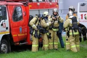 На Кирпичном заводе в Петербурге вспыхнул крупный пожар