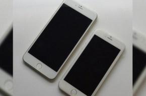 В Интернете появились первые фотографии iPhone 6
