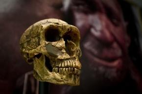 На Урале впервые нашли останки древнего человека, которым 10 тысяч лет