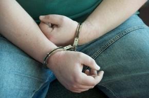 В Ленобласти подросток обвиняется в изнасиловании двух пенсионерок