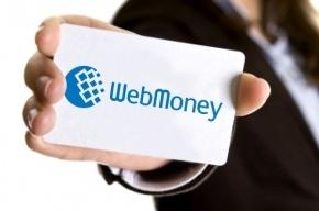 Госдума намерена ограничить работу PayPal и Webmoney