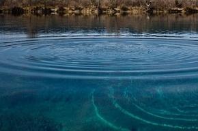 В Ленобласти пятилетняя девочка утонула в реке