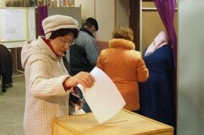 Петербургское «Яблоко» требует отменить муниципальный фильтр
