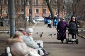 В Петербурге рождаемость превысила смертность, в России – «естественная убыль»