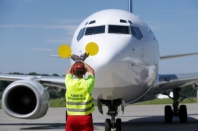 В аэропорту Ростова собака не дала приземлиться «Боингу»