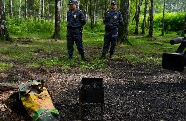 В парке Сосновка задержали любителей костров и шашлыков