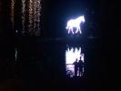 Белая лошадь промчится по рекам и каналам ночного Петербурга: Фоторепортаж