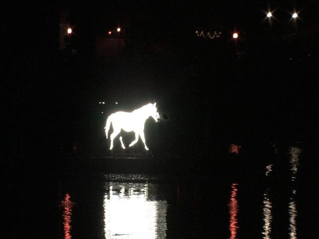 Белая лошадь промчится по рекам и каналам ночного Петербурга: Фото
