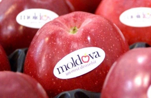 Роспотребнадзор запретил ввоз молдавских овощных консервов