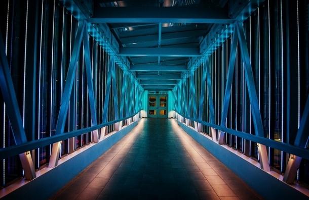 Мост на Крестовский остров построит компания из Монако
