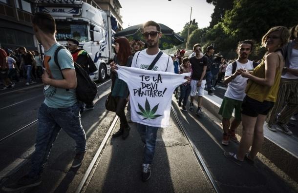 В Нью-Йорке легализовали марихуану в медицинских целях