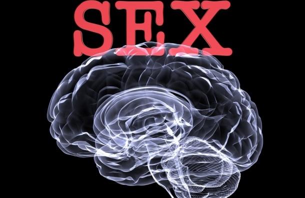 Ученые: Мозг наркоманов и сексуально зависимых работает одинаково