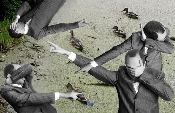 Вместо чистого пруда – отписки чиновников