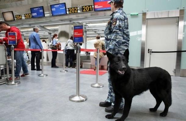 В Пулково похищены три человека