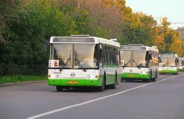 В Петербурге открываются два новых автобусных маршрута
