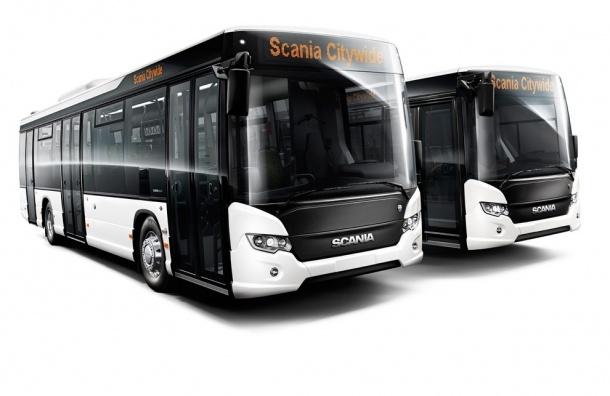 Смольный закупит автобусы на 918 млн рублей